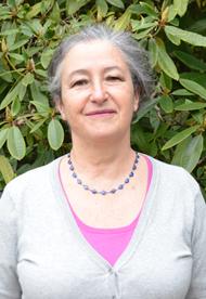 María Isabel del Río Varela., SINDOC